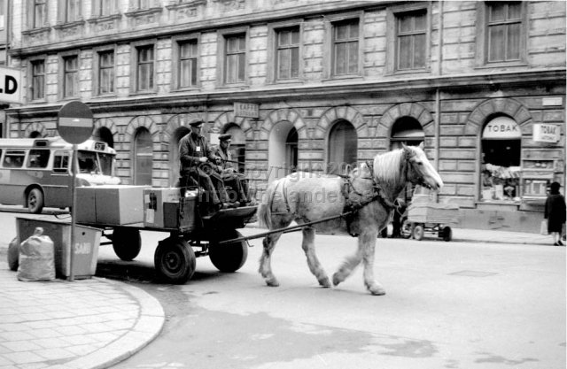 Transport by horse and carriage, Stockholm. (1966)